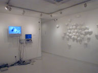 installation view at Gallery Q